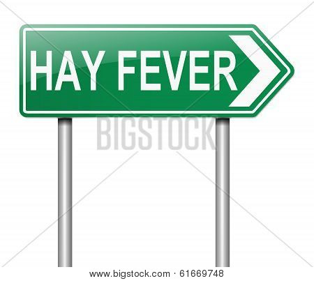 Hay Fever Concept.