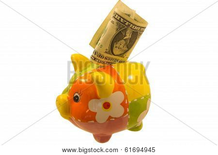 Piggy Bank And A Dollar Note Over White