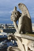 foto of gargoyles  - Gargoyle in Notre Dame in Paris in sunny day - JPG
