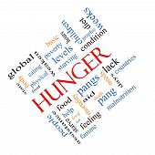 image of starving  - Hunger Word Cloud Concept angled with great terms such as food pangs starving and more - JPG