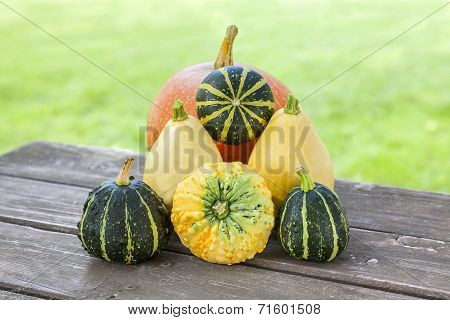 Squash And Pumpkins On Wooden Table In Garden.