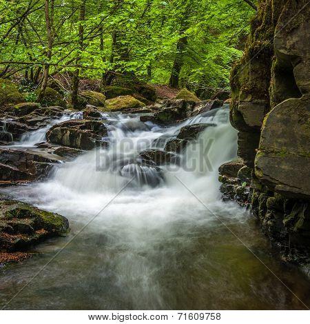 Moness Gorge, Aberfeldy