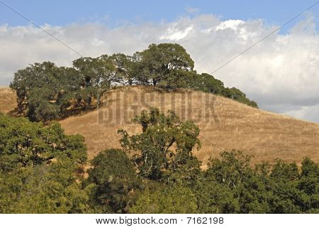 hills above the valley