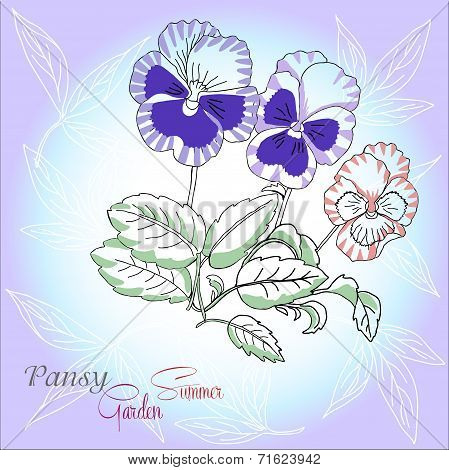 Blue background with pansies