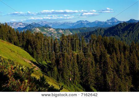 View From Scorpion Peak