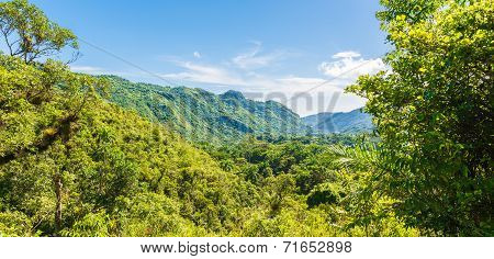 Cuban Natural Landscape