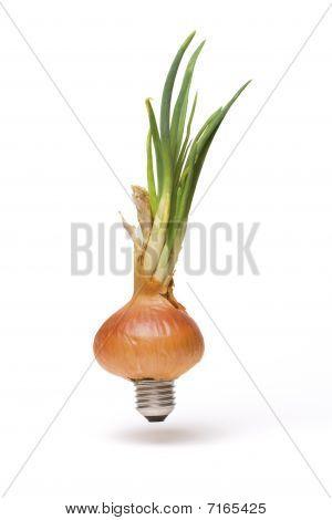 Onion Energy