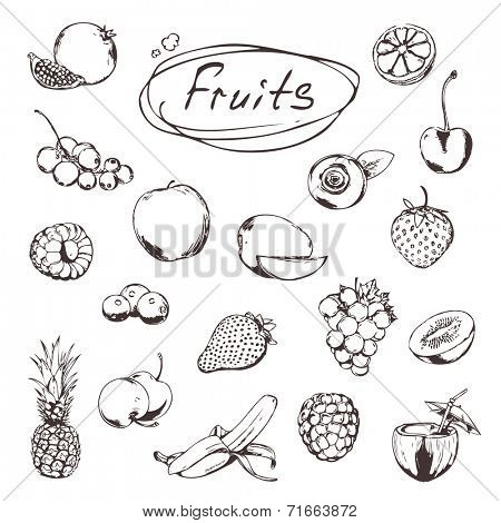 Fruits and berries, sketches of icons vector set