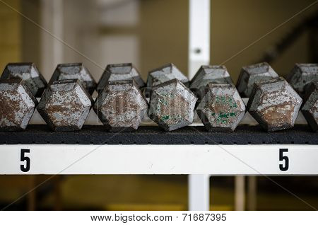 Dumbbells sitting on a rack