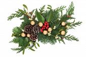 picture of mistletoe  - Christmas and winter decoration with holly - JPG