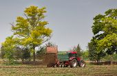 picture of tractor-trailer  - Tractor with trailer fertilizing field with natural manure - JPG