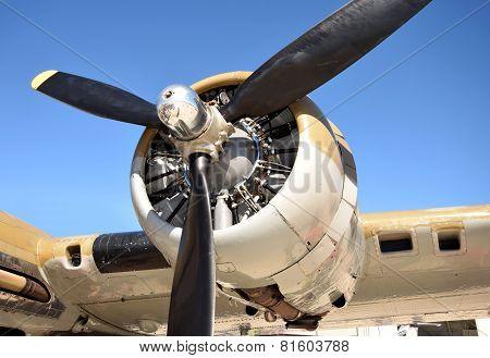 Giant Propeller