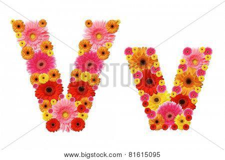 v, flower alphabet