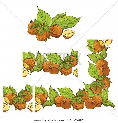 Rectangular Frame Ornament With Highly Detailed Hand Drawn Hazelnuts Isolated On White Background. P