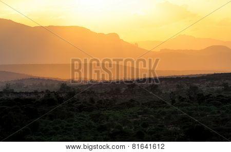 Sunset With African Savanna Trees