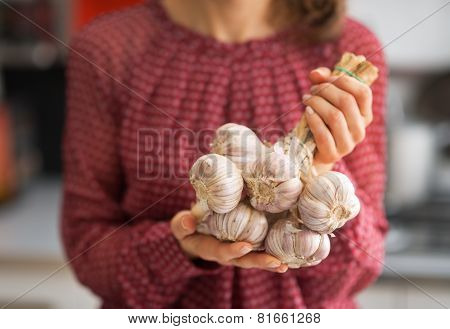 Closeup On Young Housewife Showing Bunch Of Garlic