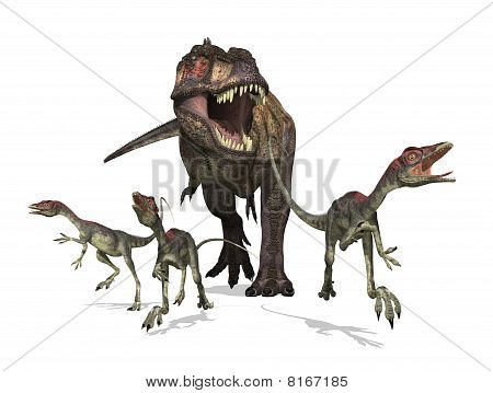 Tyrannosaurus Rex On The Hunt