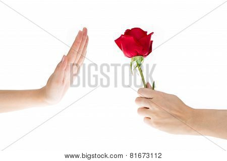 Hand Refused The Gift, Flowers