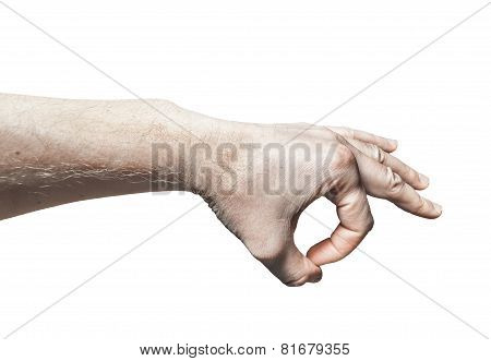 Men's  Palm Down On A White Background
