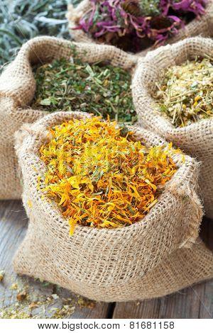 Healing Herbs In Hessian Bags, Herbal Medicine.