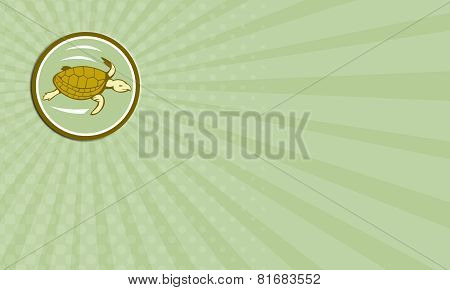 Business Card Sea Turtle Swimming Circle Cartoon