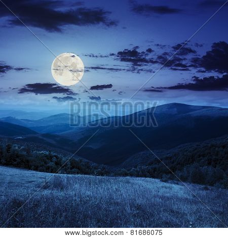 Meadow In High Mountains At Night