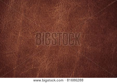 A Background Texture Of Leather