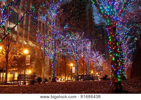 Colorful Holiday Lights Adorn Trees In Midtown Atlanta