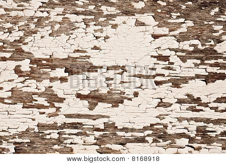 Painted Old Wooden Texture