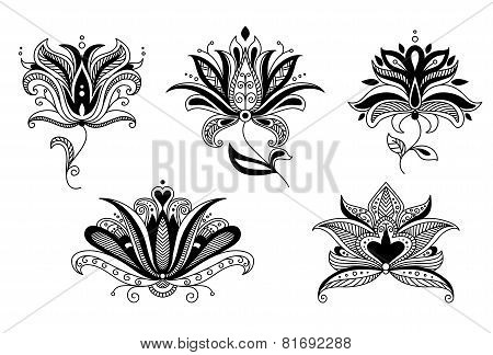 Set of paisley floral elements