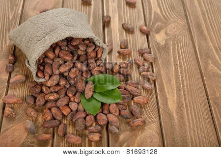 Cocoa Beans In A Bag