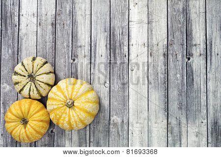 three Yellow and green pumpkin