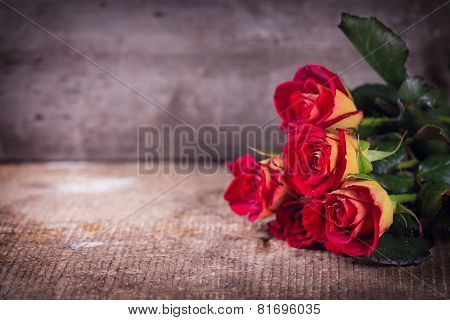 Beautiful Flowers Roses
