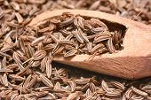 stock photo of cumin  - Closeup of caraway - JPG