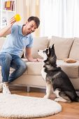 stock photo of happy dog  - Happy man is playing with his dog at home. ** Note: Shallow depth of field - JPG