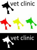 foto of veterinary  - the Illustration dedicated to the  veterinary clinic - JPG