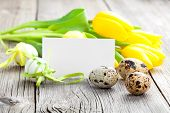 picture of quail egg  - Quail eggs and Easter eggs on wooden background - JPG