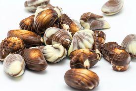 image of bonbon  - Various chocolates bonbon isolated on white background - JPG