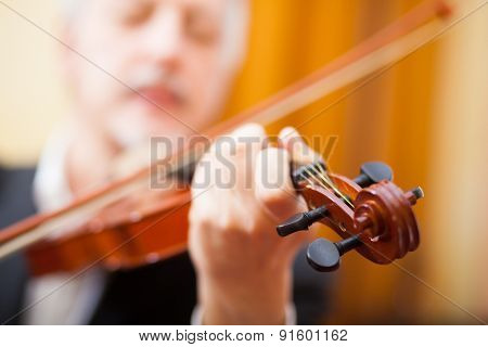 Musician playing his violin. Focus on the violin's head