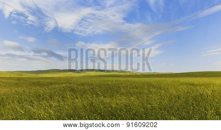 Cultivated Fields In The Mountains Of Gobustan (azerbaijan)