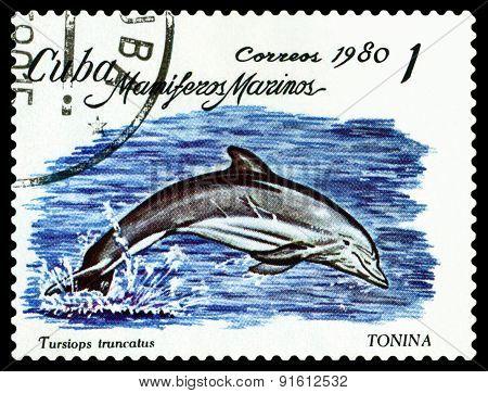Vintage  Postage Stamp. Bottlenose Dolphin.