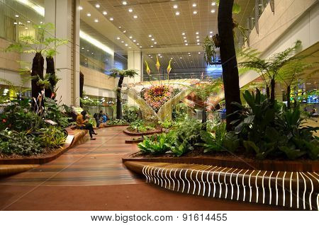 Enchanted Garden At Changi International Airport, Singapore