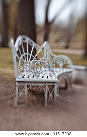 Bench In Pavlovsk Park