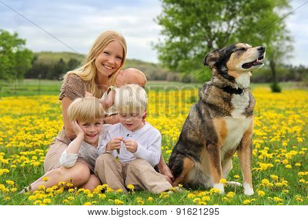 Mother And Three Children And Dog Playing In Flower Meadow