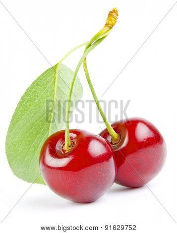 Sweet cherrys isolated on white background