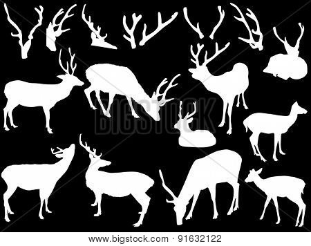 illustration with deer and antler silhouettes isolated on black background