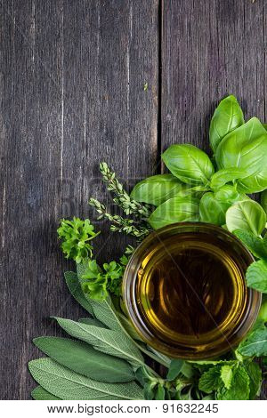 Fresh Herbs From Garden With Olive Oil