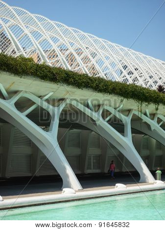 Valencia, Spain - August 2009: Arts And Science Museum By Calatrava