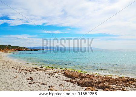 Alghero Shoreline On A Cloudy Day