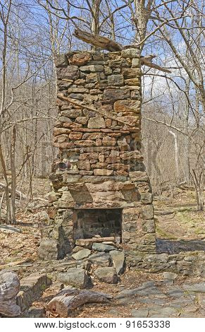 Chimney From A Ruined Cabin In The Wilderness
